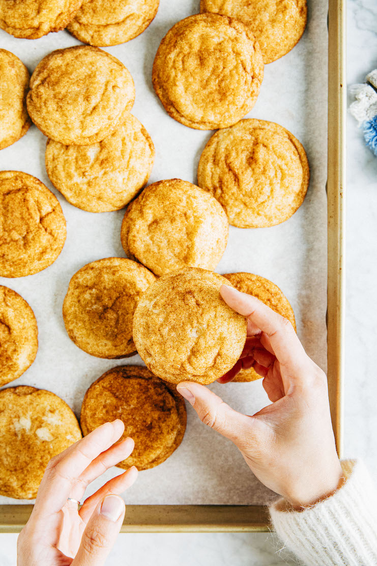 holding snickerdoodle recipe without cream of tartar